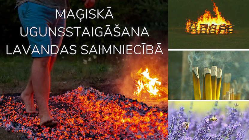 Maģiskā ugunsstaigāšana Lavandas saimniecībā